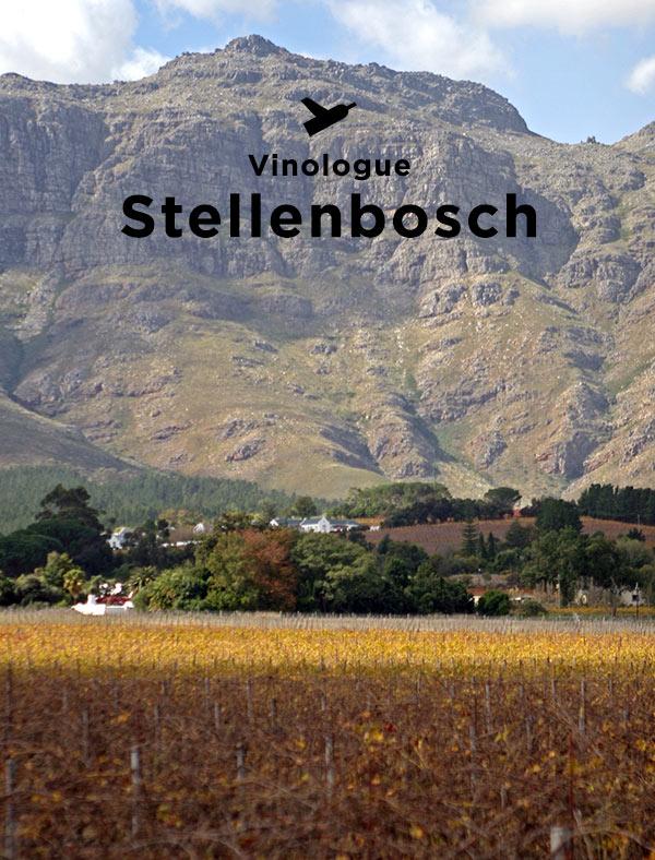 » Stellenbosch